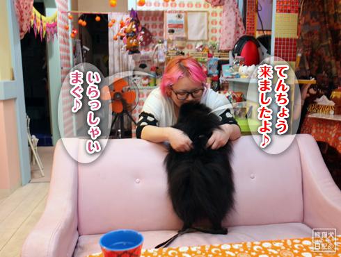 20151028_真熊3