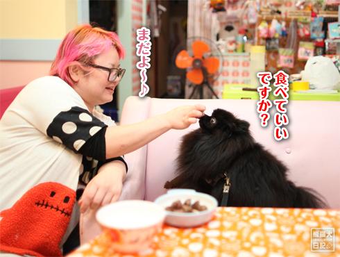 20151031_肉食4