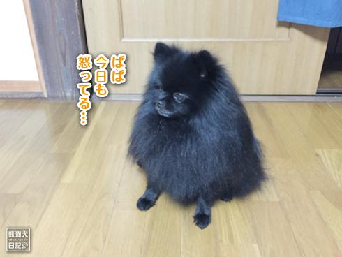 20151123_志熊4