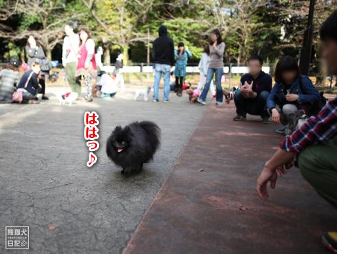 20151125_駒沢公園4