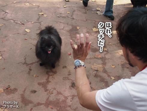 20151127_駒沢公園8