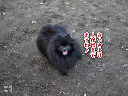 20151210_小金井公園5