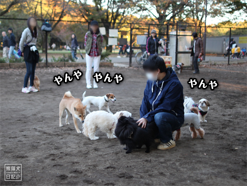 20151211_さよなら小金井公園5