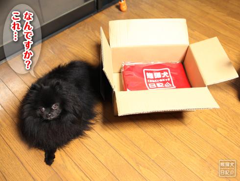 20151215_熊猫犬バッグ3