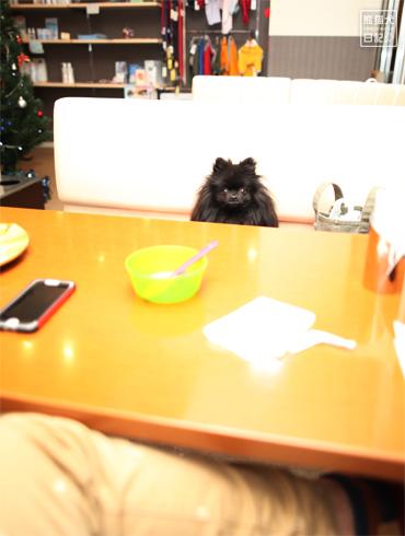 20151222_笑顔レス8