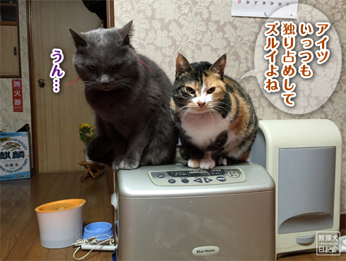 20160210_寿喜6