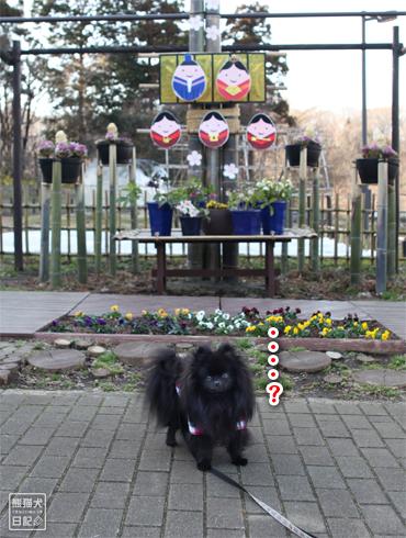 20160304_階段ダッシュ4