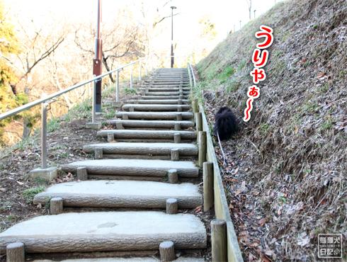 20160304_階段ダッシュ6