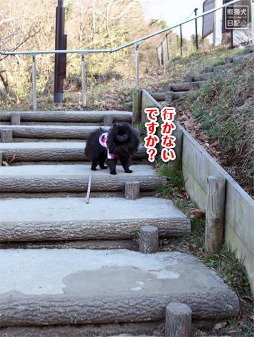 20160304_階段ダッシュ11