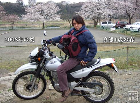 20160401_京都行こう3