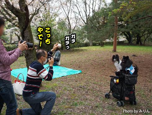 20160410_撮影会続き4