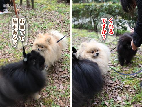20160410_撮影会続き9