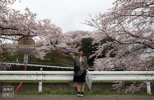 20160426_奈良の桜9