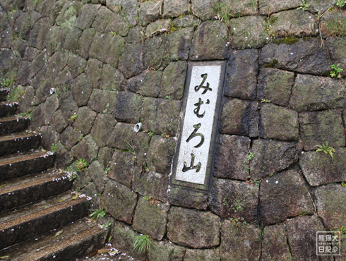 20160426_奈良の桜13