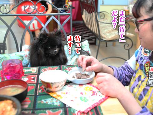 20161214_お肉4