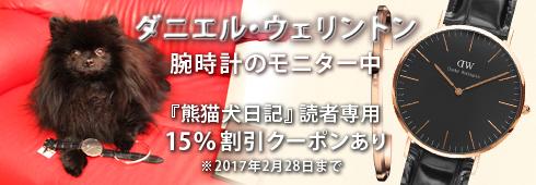 20161225_ダニエル・ウェリントン3