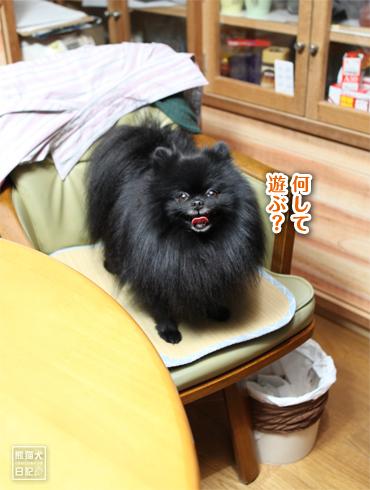 20170124_さよなら志熊6