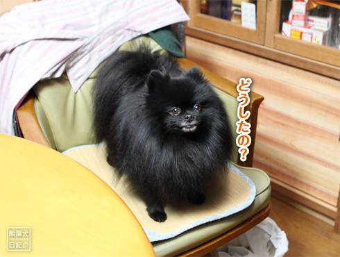 20170124_さよなら志熊5