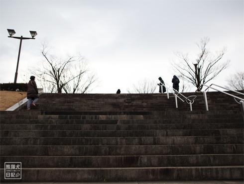 20170308_公園9