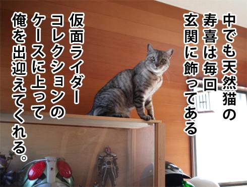 20170310_寿喜2