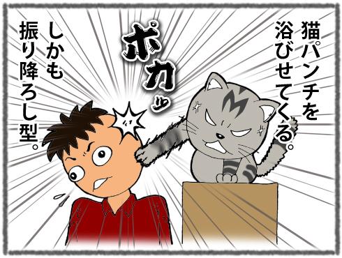 20170310_寿喜7-3