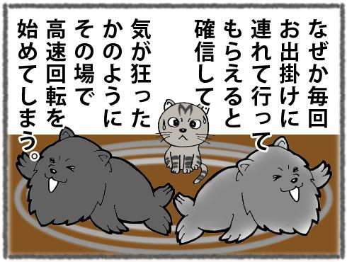 20170301_真熊3-2
