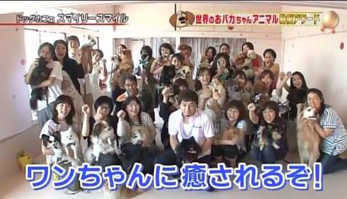 20170325_テレビ放送4