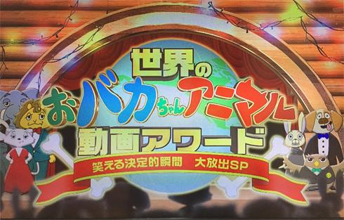 20170325_テレビ放送2