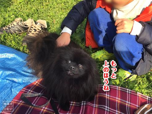 20170417_砧公園6
