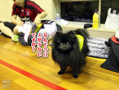20170502_真熊5