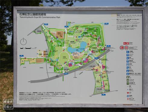 20170803_鶴見緑地7