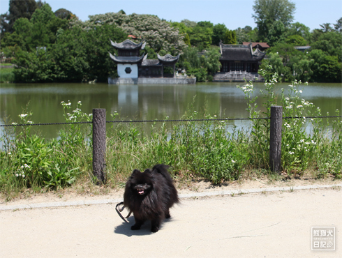 20170803_鶴見緑地10