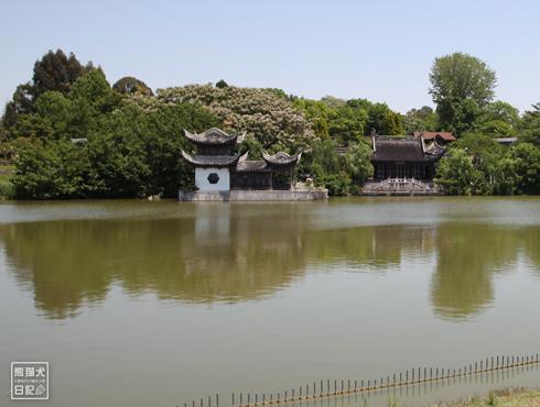 20170803_鶴見緑地9