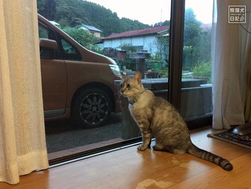 20170821_千葉の両親宅2
