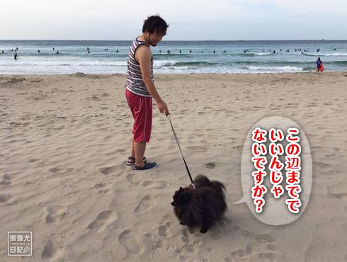 20170906_多々戸浜4