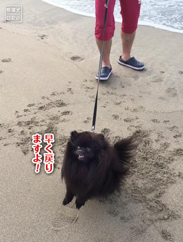20170906_多々戸浜7