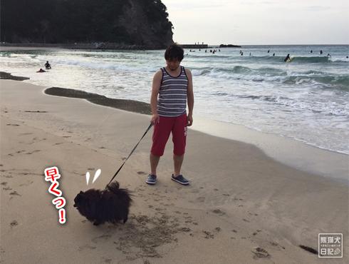 20170906_多々戸浜8