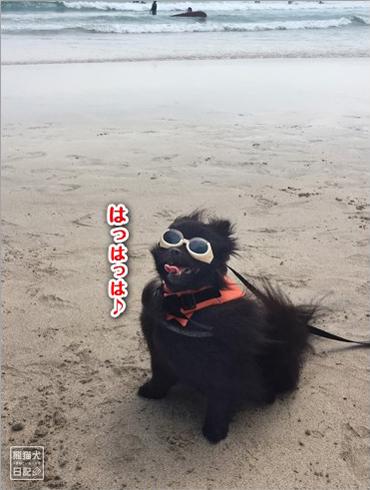 20170911_多々戸浜5