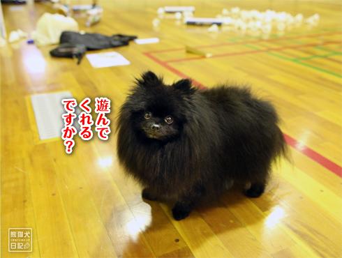 20170924_真熊5