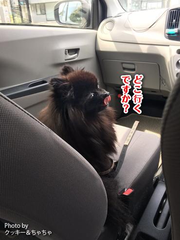 20171006_富津岬2