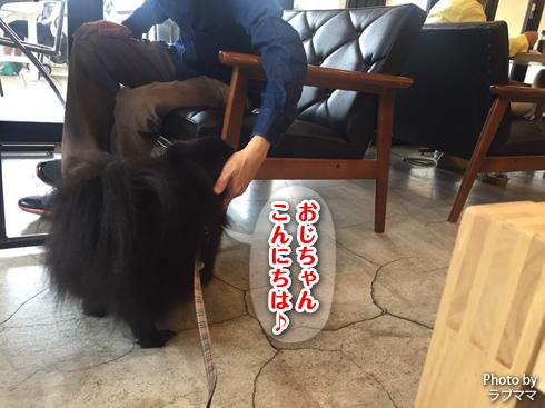 20171110_皆勤賞4