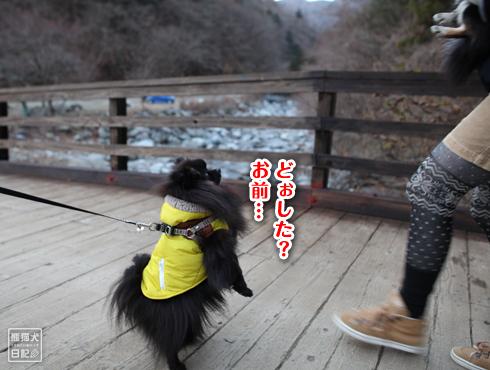 20171230_お散歩7