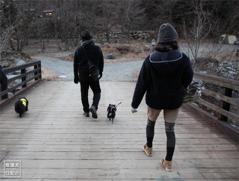20171230_お散歩8