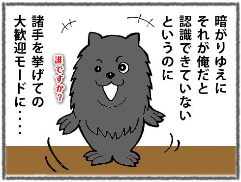 20180318_真熊6