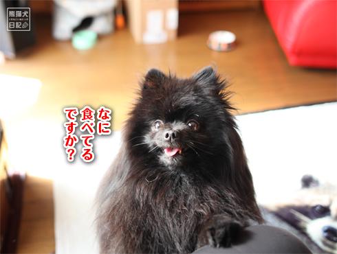 20180324_真熊2