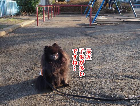 20180326_公園散歩9