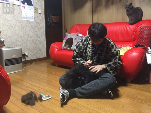 20180625_真熊ブラッシング4