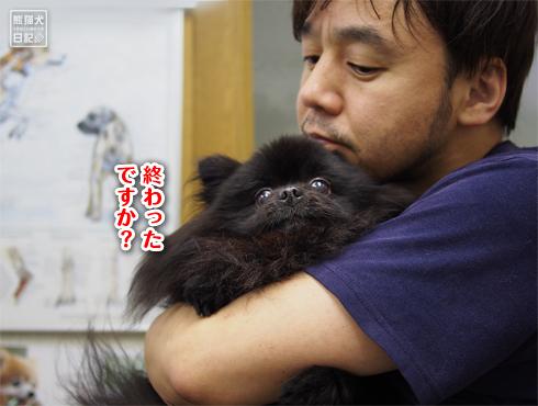 20180625_真熊ワクチン11