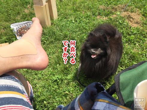 20180629_真熊のキャンプ6