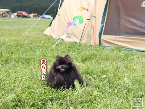 20180629_真熊のキャンプ10